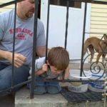 鉄柵に頭がハマってしまった子供・・・なかなか抜け出せない。諦めかけたその時、まさかの結果が・・