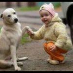 「天国で遊んであげて」愛犬を亡くした少女の手紙に神様から返事が