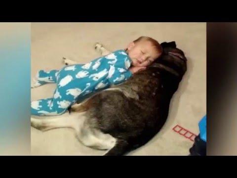 座ったまま睡魔に襲われる赤ちゃん!その先に待っていたのは・・・