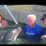 イルカとおじいちゃんの真剣勝負に笑いが止まらない